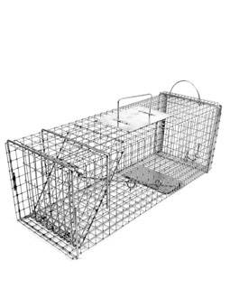 Feral Cat Cage