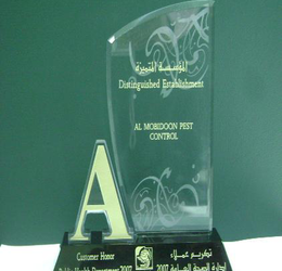 Awarded as A Grade Company (Year 2007)